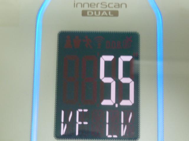 ディープチェンジHMB2017年4月13日内臓脂肪レベル
