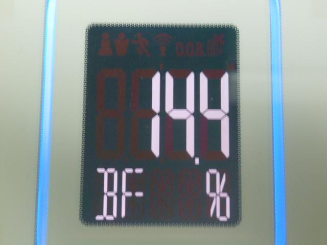 ディープチェンジHMB2017年4月28日体脂肪率