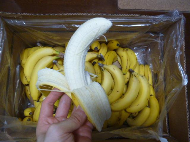 訳ありバナナ14kg剥いた