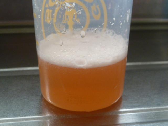 エクステンドマンゴーネクター味と水150ml