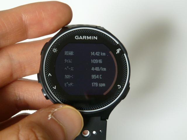 11月19日GARMIN230Jで14.4km